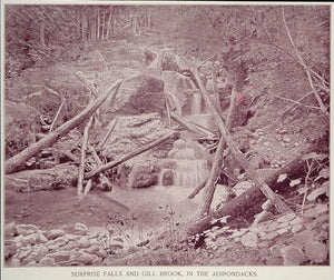 1893 Print Surprise Falls Gill Brook Adirondacks NY - ORIGINAL HISTORIC AW2
