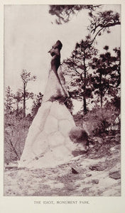 1893 Print Rock Formation Idiot Monument Park Colorado - ORIGINAL AW