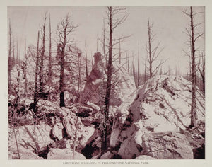 1893 Print Limestone Hoodoos Yellowstone National Park - ORIGINAL AW