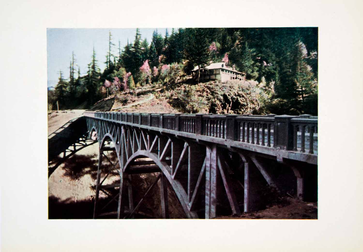 1915 Color Print Latourell Falls Creek Bridge Columbia River Highway Oregon CGH1