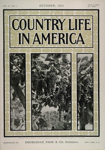 1902 Country Life in America COVER October Grapes Vine - ORIGINAL CL1