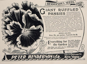1902 Ad Peter Henderson Seeds Giant Ruffled Pansy NICE - ORIGINAL CL1