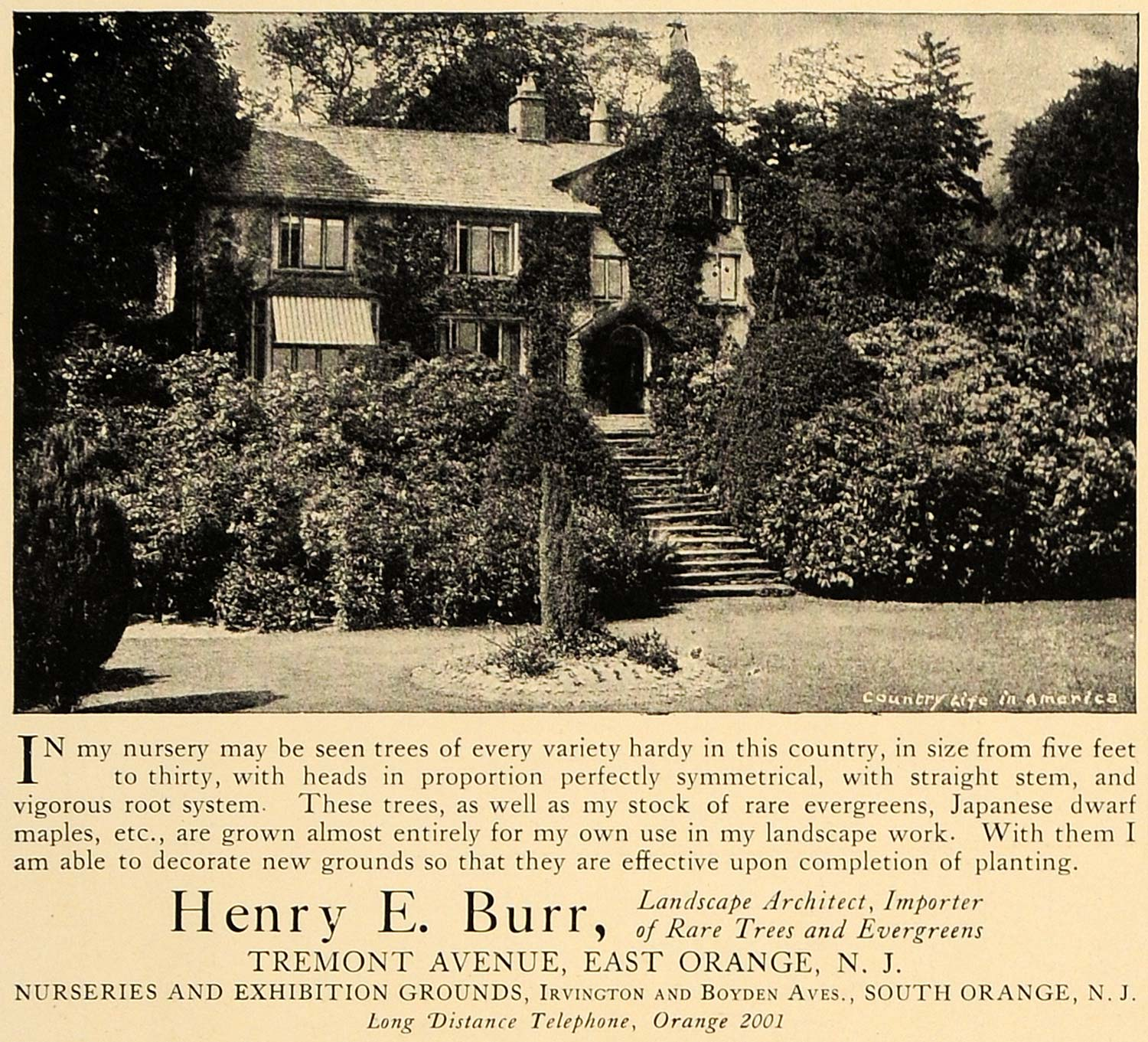 1906 Ad Henry E. Burr Landscape Architect Nurseries - ORIGINAL ADVERTISING CL4
