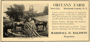 1907 Ad Oritany Farm Marshall D. Baldwin Breeding Horse - ORIGINAL CL4