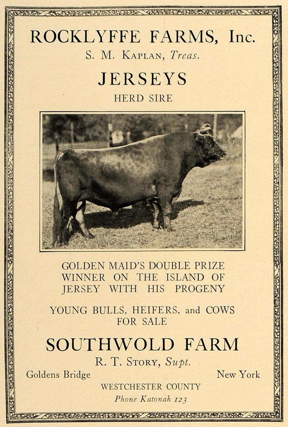 1923 Ad Rocklyffe Southwold Farm Kaplan Jersey Cows - ORIGINAL ADVERTISING CL4
