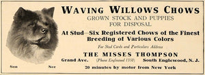 1919 Ad Waving Willows Chows Puppies The Misses Thomson - ORIGINAL CL4