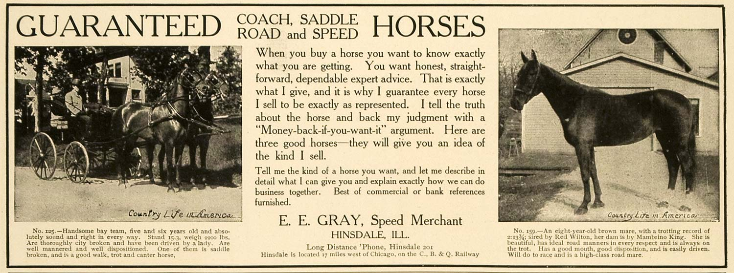 1906 Ad E.E. Gray Coach Saddle Road Speed Horses IL - ORIGINAL ADVERTISING CL4