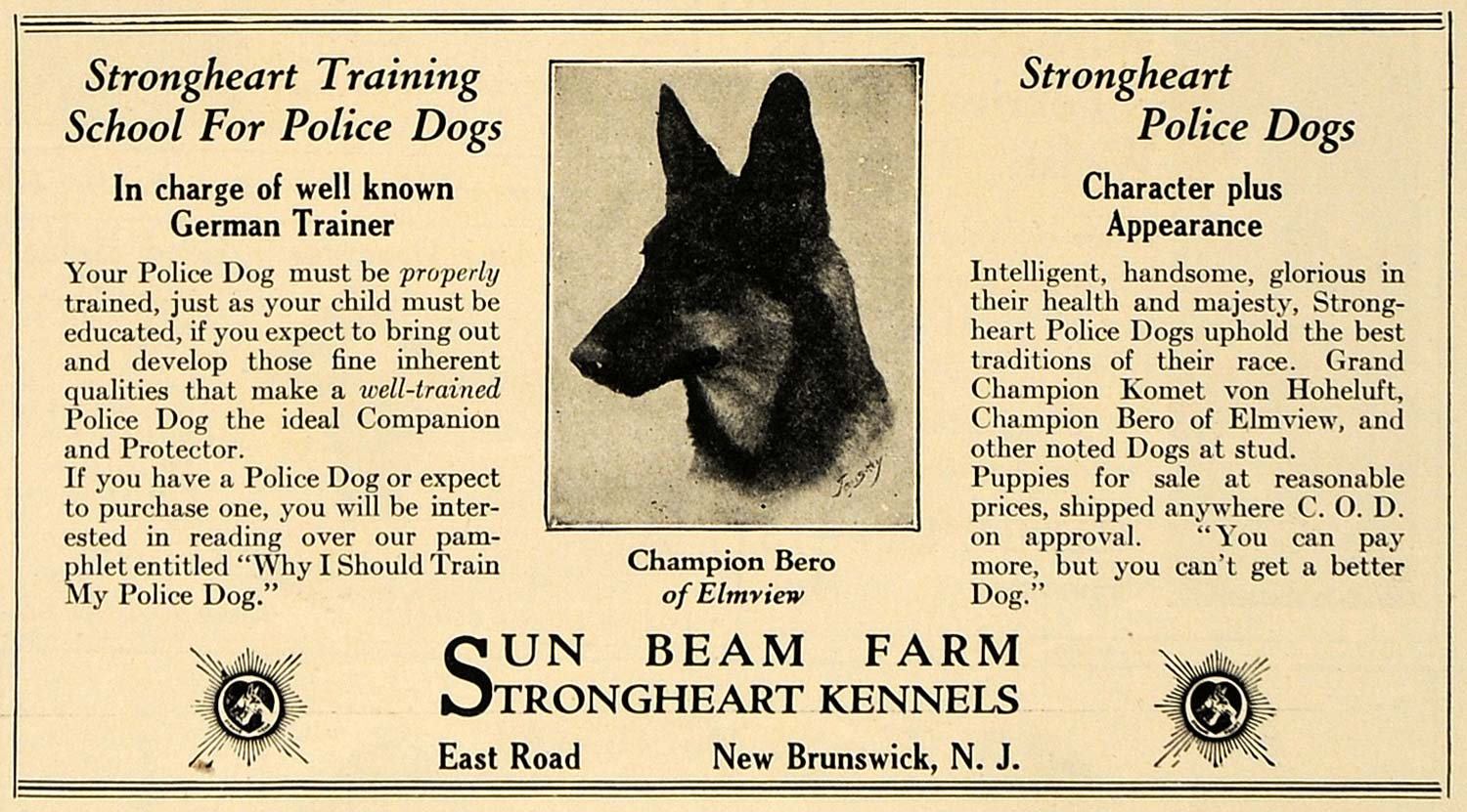 1924 Ad Police Dogs Sun Beam Farm Strongheart Kennels - ORIGINAL ADVERTISING CL7