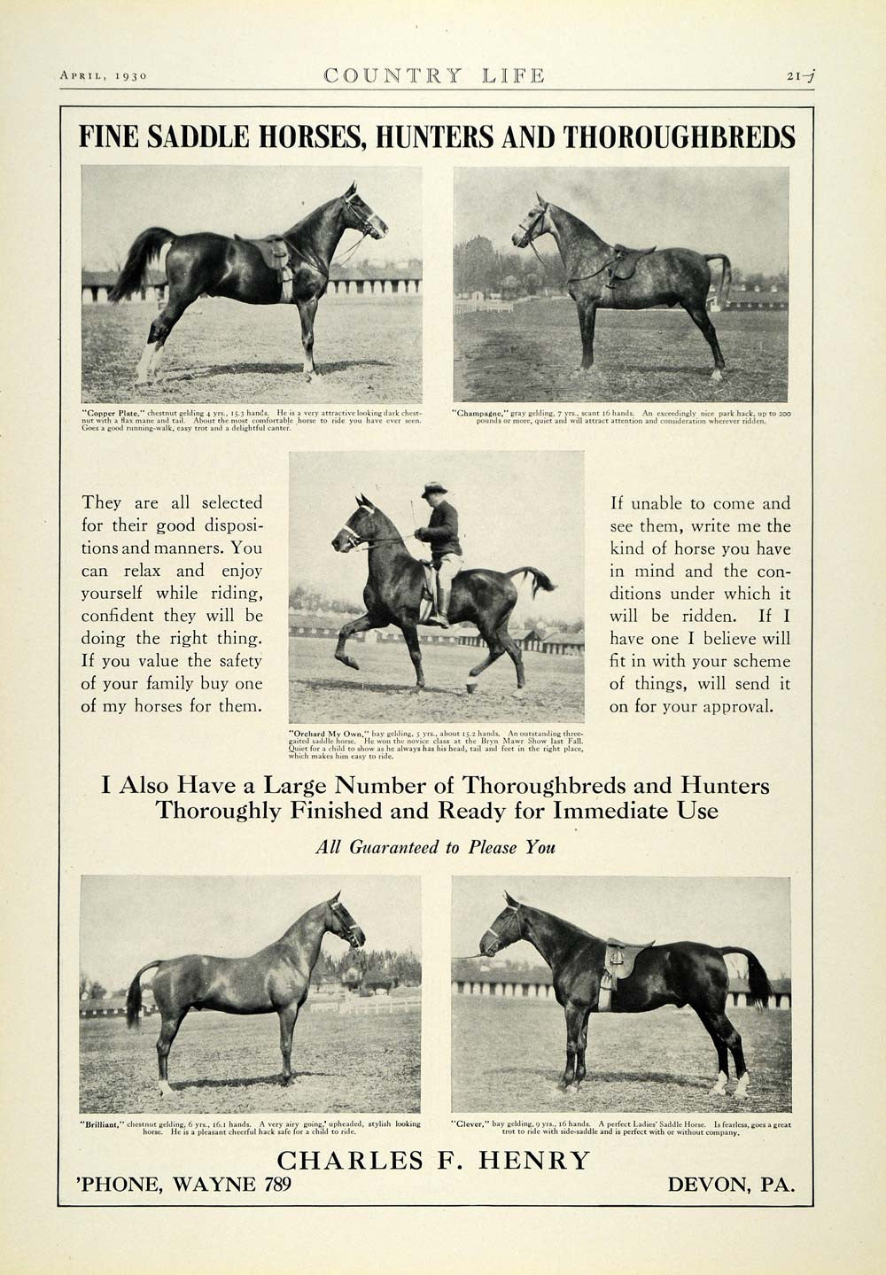 1930 Ad Charles F. Henry Thoroughbred Horses Hunters Jumpers Saddleseat COL2