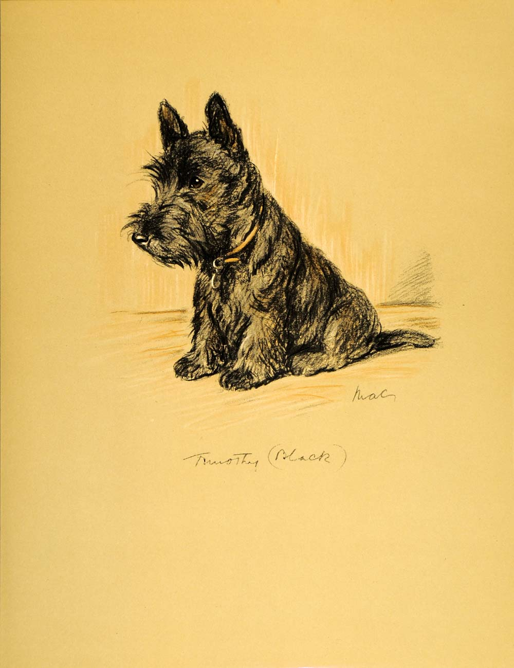 Australia Scottish Terrier Puppy Dog Vintage Travel Advertisement Art Poster