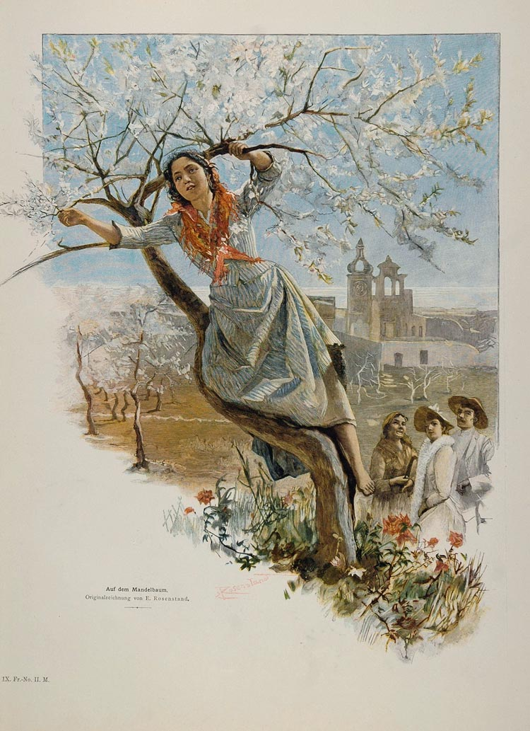 1895 Mandelbaum Almond Tree Girl Rosenstand Engraving - ORIGINAL