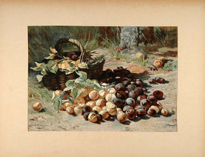 1896 Print Dutch Still Life Plums Geraldine Bakhuyzen - ORIGINAL FAI5