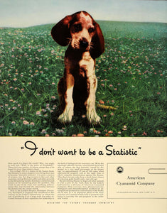 1941 Ad American Cyanamid Puppy Lederle Labs Distemper - ORIGINAL FT6