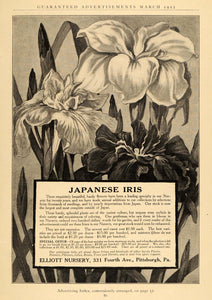 1912 Ad Elliot Nursery Japanese Iris Flowers Glasshouse - ORIGINAL GH2