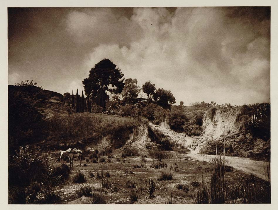 1928 River Cladeus Kladeos Olympia Greece Photogravure - ORIGINAL GREECE