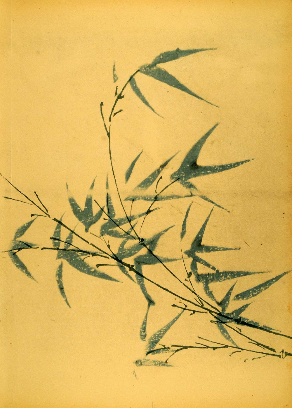 1925 Photo-Lithograph Blue Green Bamboo Still Life Stalks Stems Suede INS3
