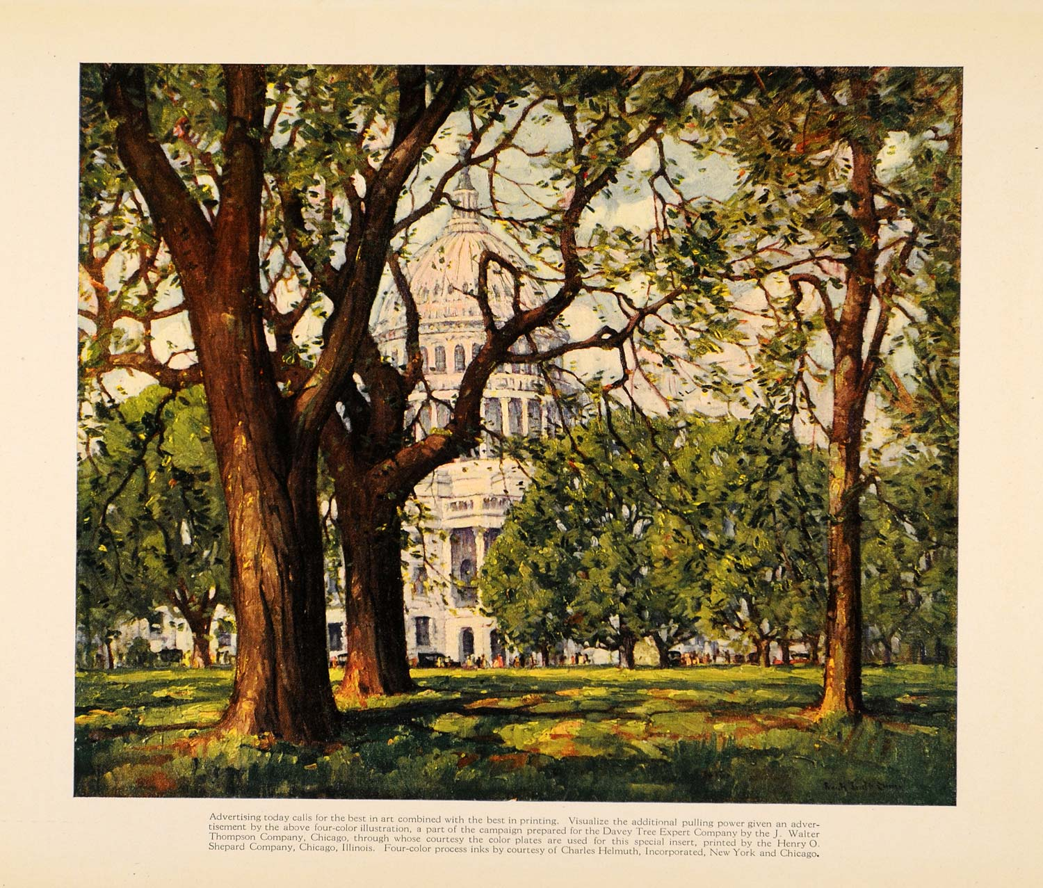 1922 Print White House Capital Trees Printing Painting - ORIGINAL IPR1