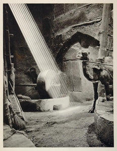 1937 Iranian Oil Mill Camel Iran Photogravure Graefe - ORIGINAL PHOTOGRAVURE IR1