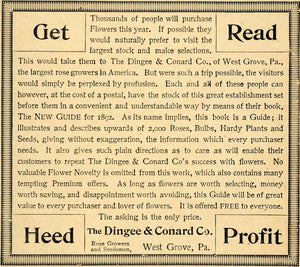1892 Ad Dingee Conard Rose Growers Gardening Guide Book Heed Seedsmen West LHJ4 - Period Paper