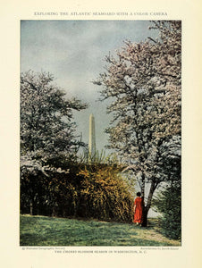 1926 Print Washington D.C. Monument Cherry Blossom Trees Floral Botanical NGM1