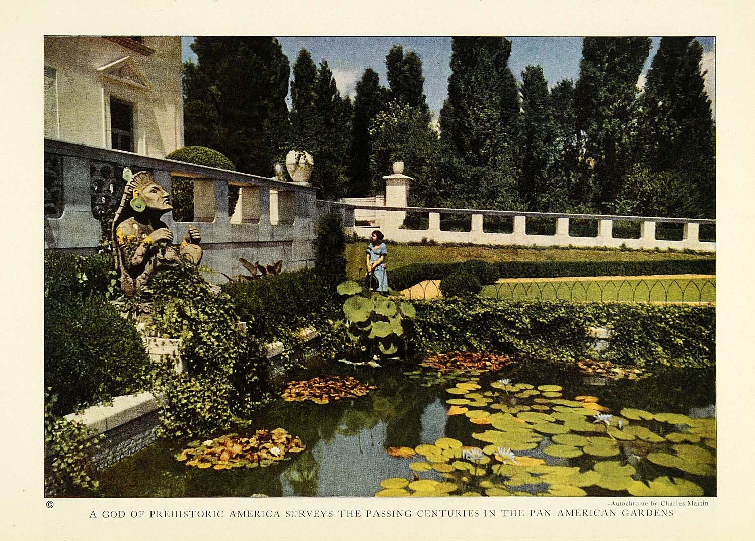 1923 Print Pan American Botanical Gardens Washington DC Pond ...