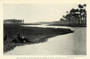 1926 Print Alfred Pearce Dennis Egypt Palm Nile River Flooding Egyptian NGM1
