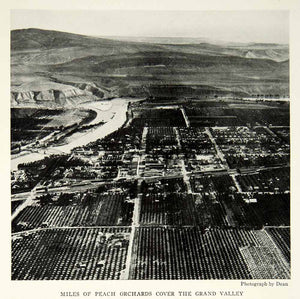 1932 Print Colorado River Valley Peach Orchards Aerial View Landscape Image NGM9