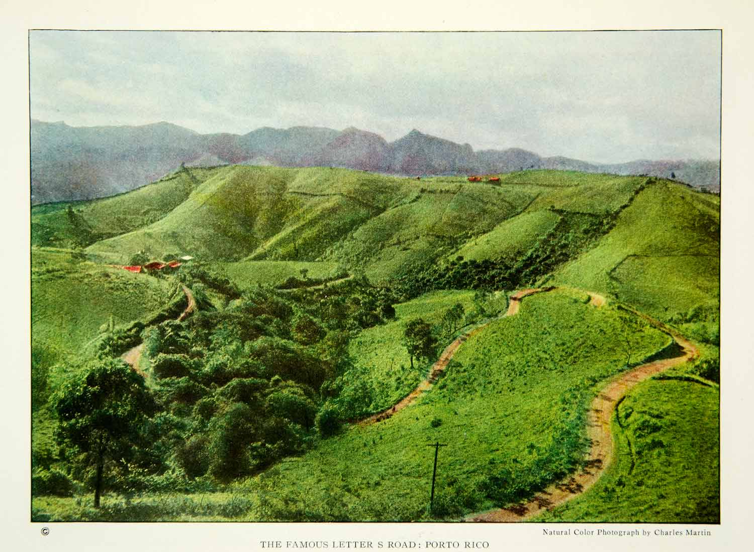 1924 Color Print Letter S Road Puerto Rico Landscape Historical Image Trees NGM9