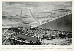 1933 Print Medemblik Farmland Aerial View Dutch Netherlands Historical NGMA2