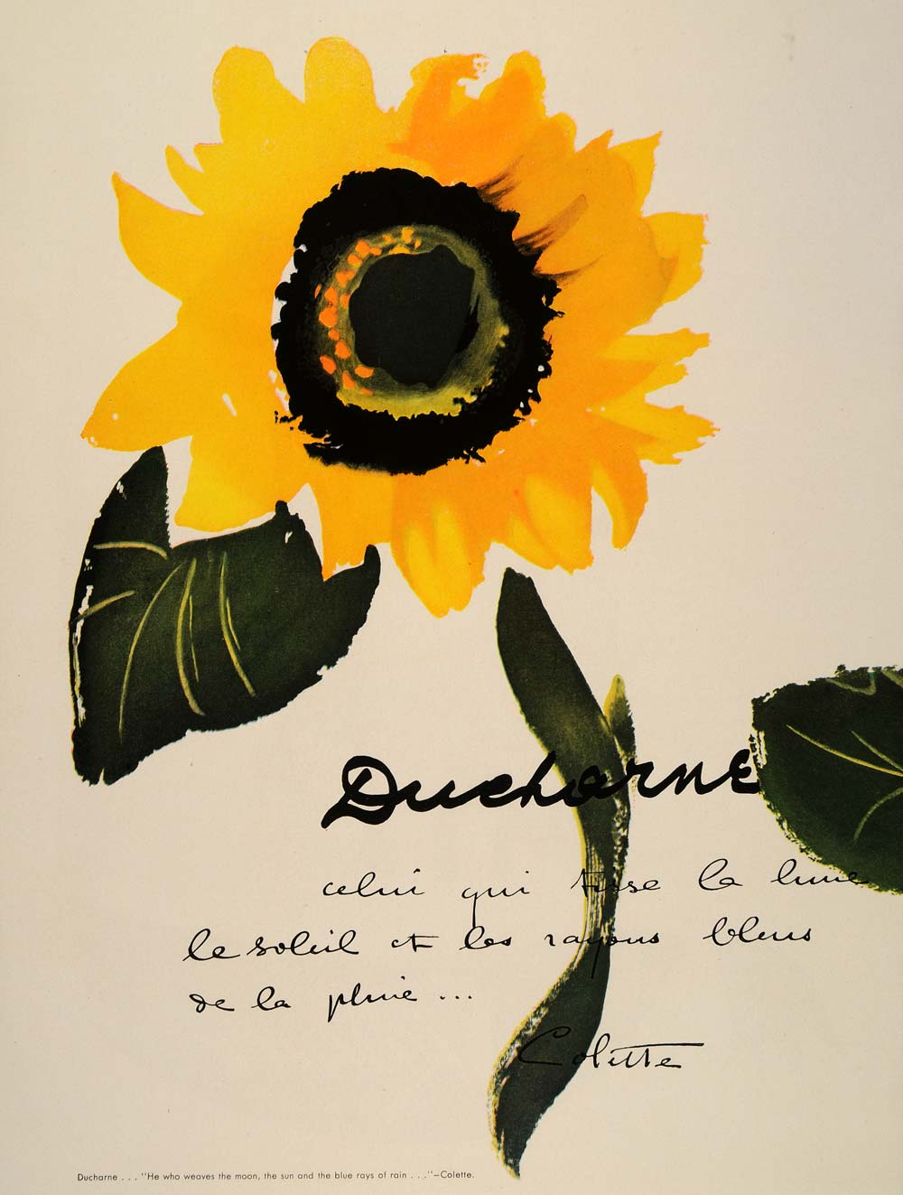 "1948 Ad Ducharne Fabric Sunflower Colette Quotation ""Celui qui tisse la lune.."""
