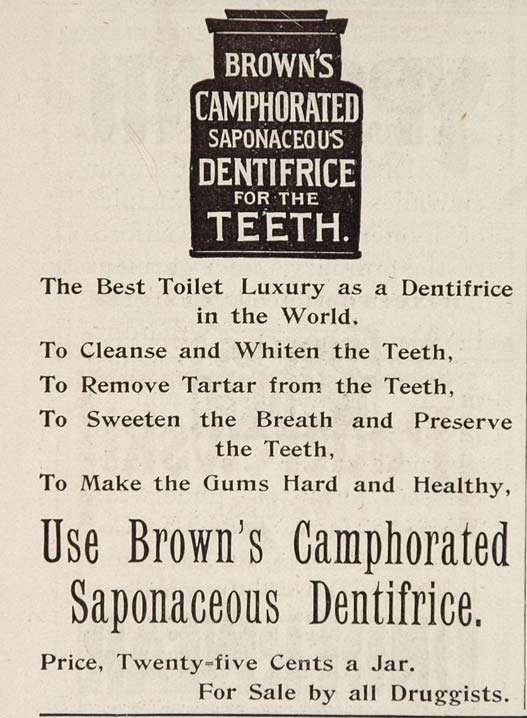 1896 ORIG Ad Brown's Camphorated Saponaceous Toothpaste - ORIGINAL OLD3