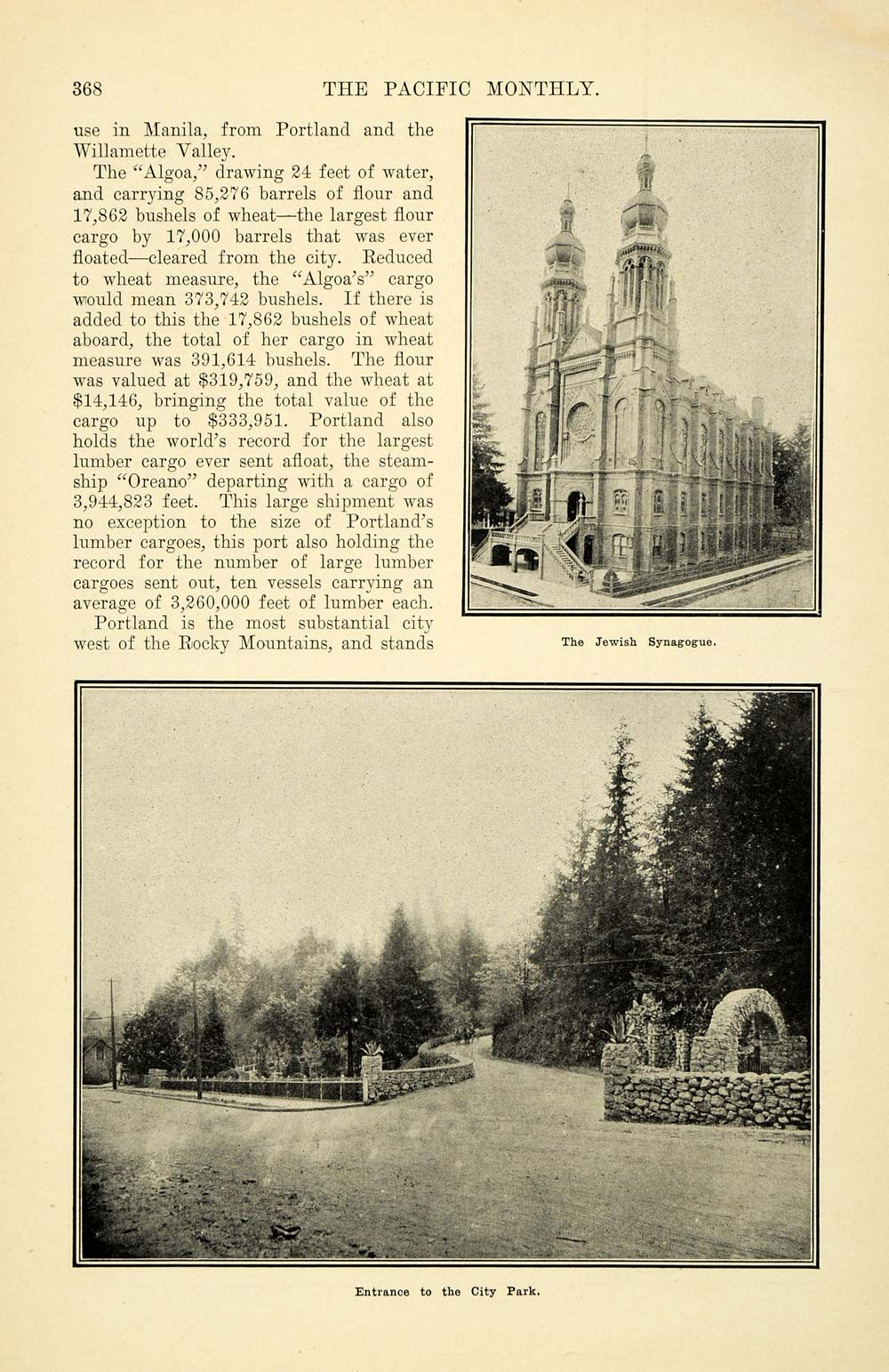 1905 Article Portland Rose City Rinaldo Hall Garden - ORIGINAL PM2
