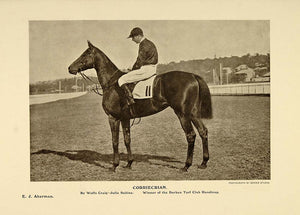 1908 Print Corriecrian Horse Durban Turf Club Handicap ORIGINAL HISTORIC PNR2