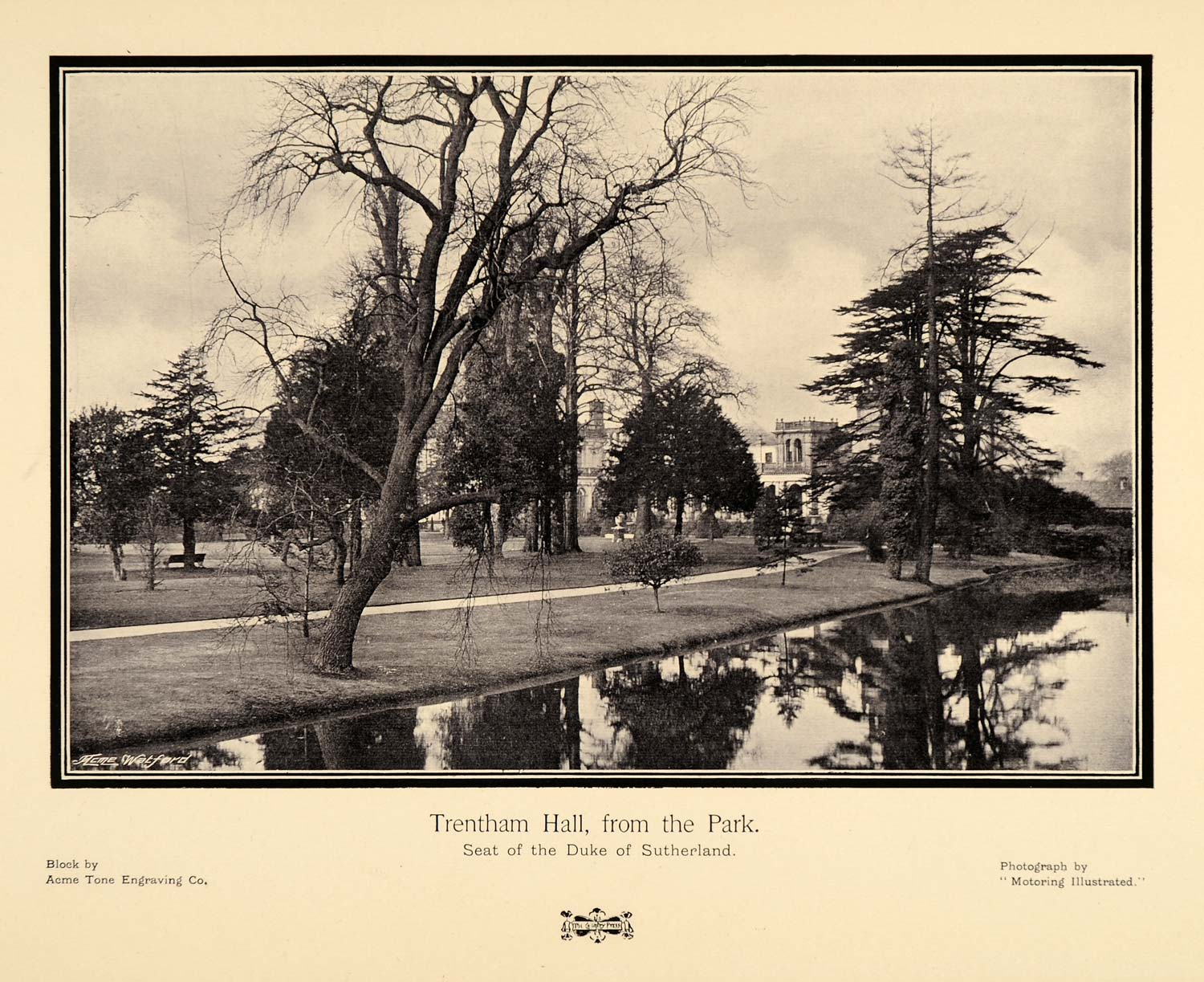 1905 Print Trentham Hall House Building Duke of Sutherland England Trees PNR8