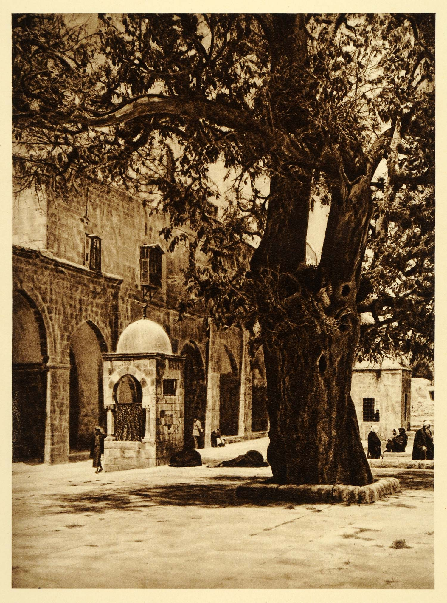 1925 Jerusalem Old City Temple Mount Fountain Tree - ORIGINAL PHOTOGRAVURE PS5