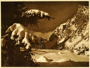 1932 Romania Bucegi Mountains Valley Winter Snow Tree - ORIGINAL RM3