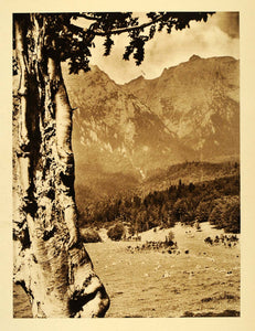 1932 Romania Alba Valley Landscape Bucegi Mountains - ORIGINAL PHOTOGRAVURE RM4