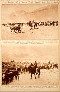 1923 Rotogravure Cowboys Cow Pony Cattle Ranching Roundup Drive Herd Old West