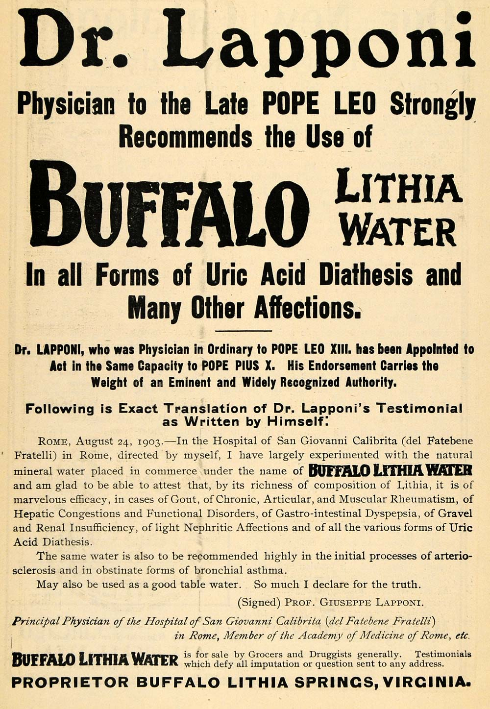 1903 Ad Dr Lapponi Pope Leo XIII Buffalo Lithia Water - ORIGINAL TOM1