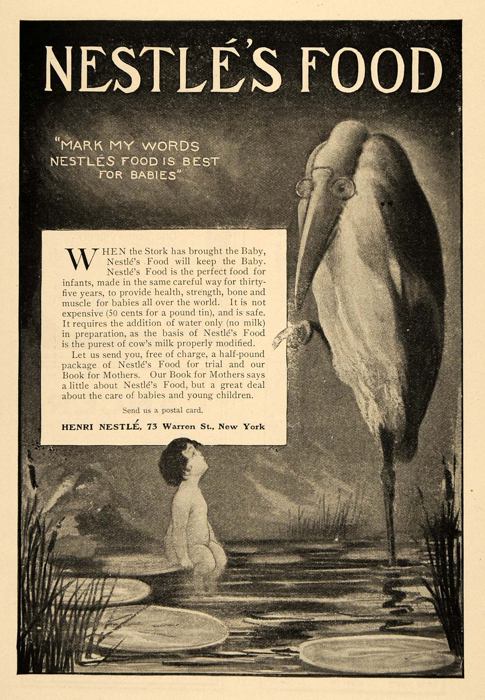 1902 Ad Henri Nestle Stork Bird Food Baby Formula Pond - ORIGINAL TOM3