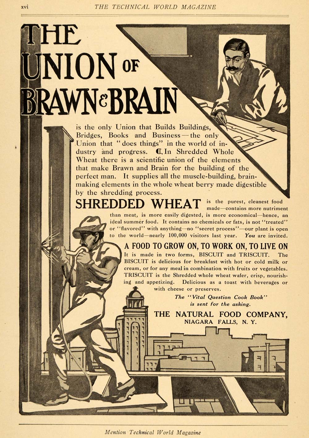 1906 Ad Natural Food Shredded Wheat Brain Construction - ORIGINAL TW3