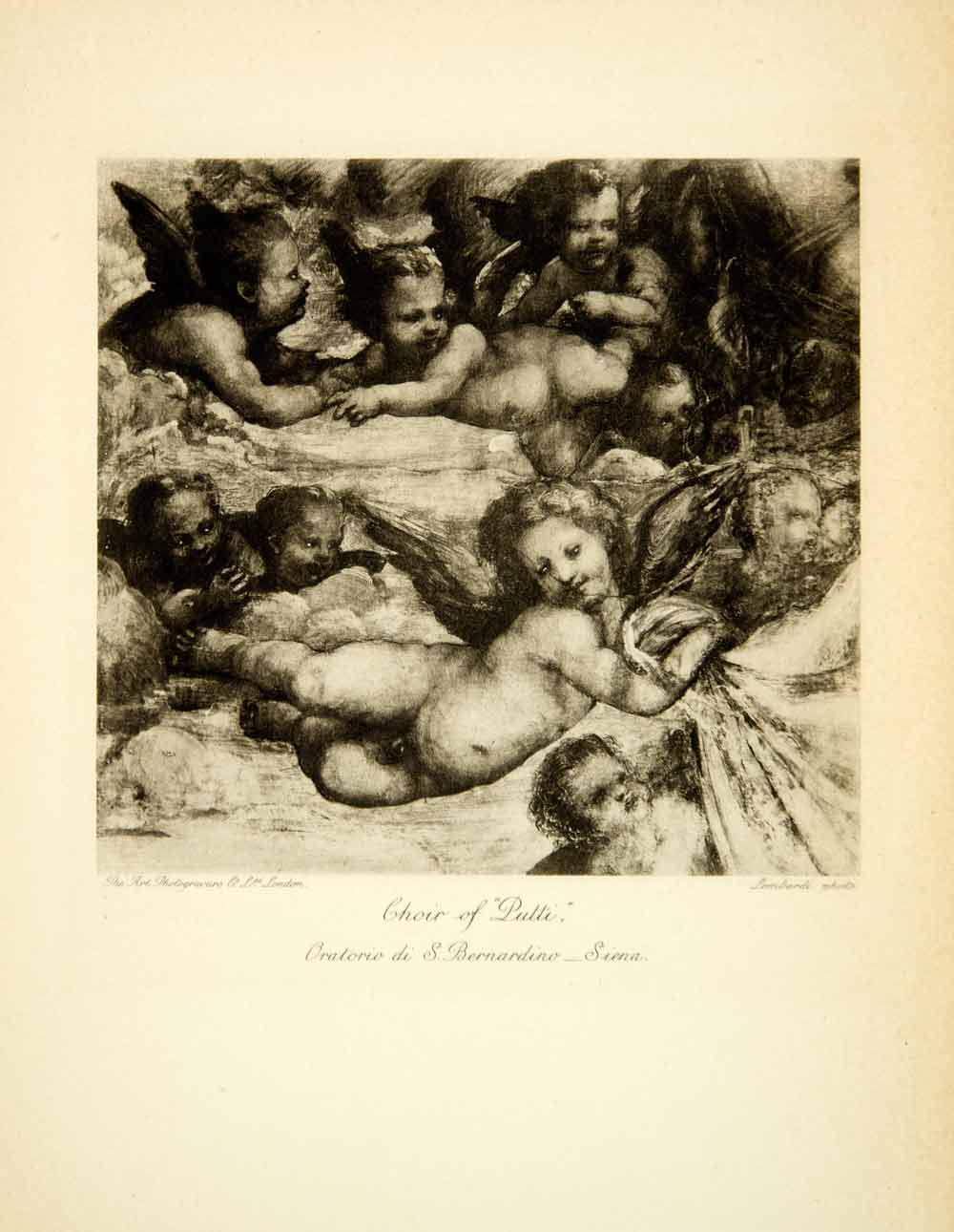 1906 Photogravure Giovanni Antonio Bazzi Il Sodoma Art Angel Choir Nude XAQA1