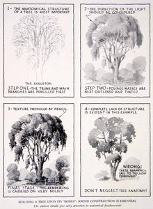 1943 Print Tree Trunk Branch Art Leaves Paint Foliage Construction XAW5