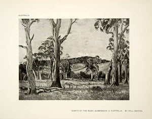 1917 Print Giants Bush Native Tribal Gumeracha Australian Will Ashton XAW7