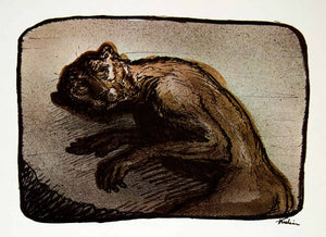 1969 Aquatone Print Alfred Kubin Art Cat Person Mythical Creature Beast XDG2