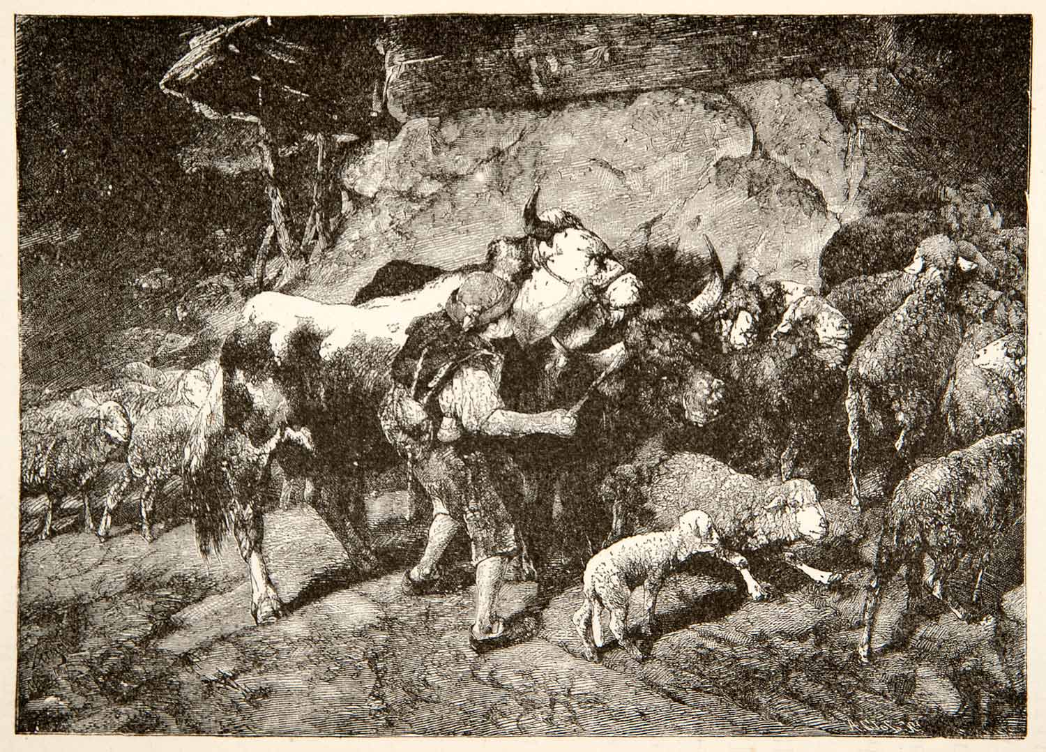 1881 Wood Engraving Cattle Sheep Shepherd Landscape Switzerland Wildlife XEI4
