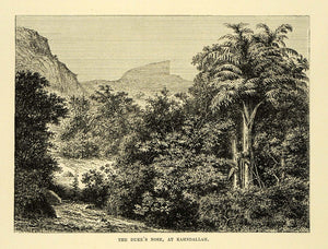 1878 Wood Engraving Duke's Nose Kahndallah India Landscape Scenery Tree Art XGA4