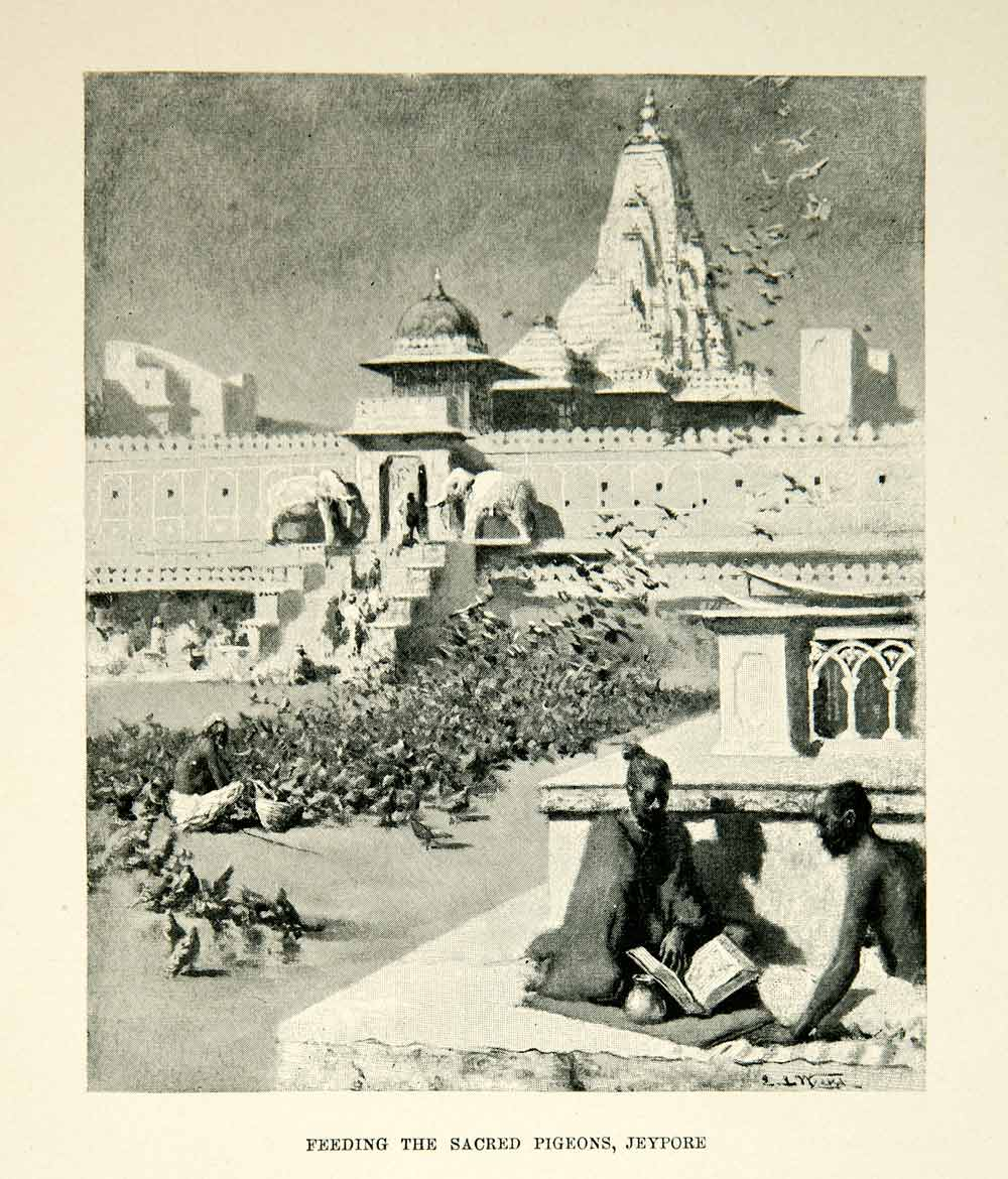 1896 Print Sacred Pigeons Jeypore India Edwin Lord Weeks Birds Men XGAF9