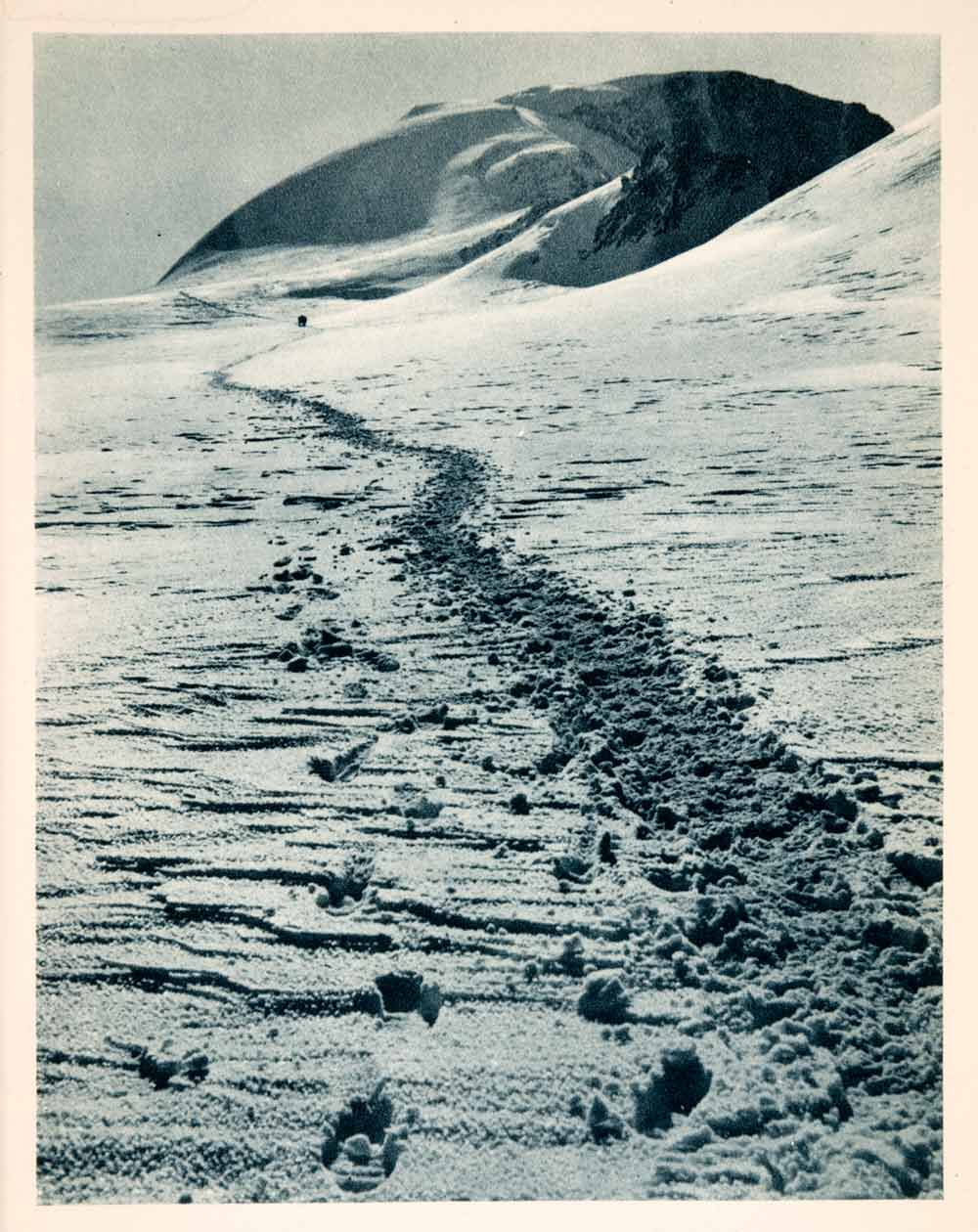 1937 Photogravure Footprints Glacier Summit Similaun Otztal Alps Tyrol XGDA6