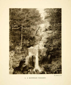 1904 Photogravure Japan Waterfall Casade Mountain Picturesque Forest XGDD1